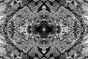 Quad Posters - Kaleidoscope in Wood 7 horizontal Poster by Dawn Currie