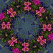 Flower Kaleidoscopes Posters - Kaleidoscope Lantana Wreath Poster by Cathy Lindsey