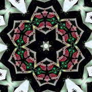 Circular Photos - Kaleidoscope Lighthouse Flower by Cathy Lindsey