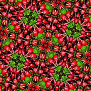 Vegetable Digital Art - Kaleidoscope Radishes by Amy Cicconi