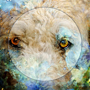 White Dog Framed Prints - Kaliedoscope Eyes Framed Print by Judy Wood