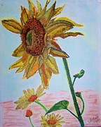Sun Pastels Originals - Kansas Flower by Ann Whitfield