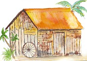 Shed Paintings - Karanambo Shed by Patricia Beebe