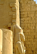 Pharaoh Prints - Karnak Temple 19 Print by Antony McAulay