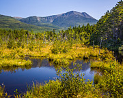 Pond In Park Prints - Katahdin at Daicey Pond Print by Susan Cole Kelly