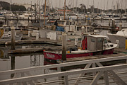 Docked Boats Metal Prints - Katherine Metal Print by Amanda Barcon