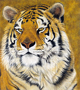 Feline Mixed Media Metal Prints - Kato Metal Print by Lawrence Supino