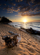 Driftwood Prints - Kauai Beach East Print by Ed Boudreau