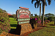 Scott Pellegrin - Kauai Coffee