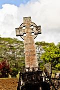 Scott Pellegrin - Kauai Cross
