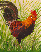 Red Glass Art Prints - Kauai Rooster Print by Anna Skaradzinska