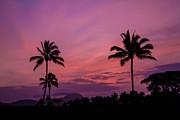Roger Mullenhour - Kauai Sunrise