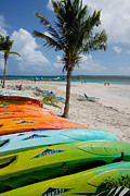 Boat Photos - Kayaks on the Beach by Amy Cicconi