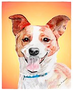 Animal Shelter Drawings - Kaye a former shelter sweetie by Dave Anderson