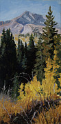 Verticle Framed Prints - Kebler Pass Framed Print by Mary Giacomini