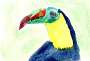 Toucan Digital Art Posters - Keel Billed Toucan Watercolor 1 Poster by Mark Wilcox