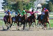 Race Horse Photos - Keeneland Run by Mia Capretta