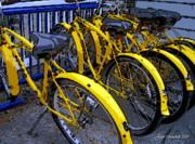 Kelley Island Bikes Print by Joan  Minchak