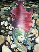 Salmon Paintings - Kenai Ded Red 2 by Amy Reisland-Speer