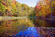Kentucky Digital Art - Kentucky Autumn Pond by Lena Auxier