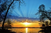 Barkley Prints - Kentucky Lake Sunrise Splendor Print by Shirlee Mikel Vos