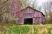 Gene Linzy - Kentucky Tobacco Barn in...