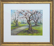 Spring Scenes Pastels - Kenwood Cherry Trees by Nancy Heindl