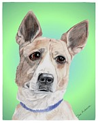 Animal Shelter Mixed Media - Kermit Humane Society Sweetie by Dave Anderson