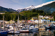 Ketchikan Alaska Dock Print by Michael J Bauer
