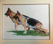 Shepherds Drawings Prints - Kevin and Biggi Print by Karen McDonald