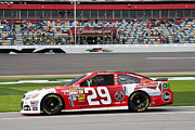Daytona 500 Photos - Kevin Harvick #29 Budweiser by Bao D