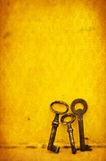 Gold Key Prints - Key Family Print by Priska Wettstein