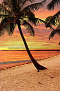 Marty Koch  Art - Key West Beach by Marty Koch