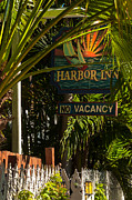 St Elizabeth Prints - Key West Harbor Inn Sign Print by Ed Gleichman