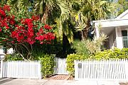 Architectural Garden Scene Posters - Key West Houses and Gardens Poster by Susanne Van Hulst