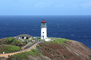 Sea Platform Framed Prints - Kilauea Point Lighthouse Framed Print by Ange Sylvestri