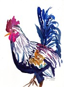 Colorful Rooster Framed Prints - Kilohana Rooster Framed Print by Marionette Taboniar
