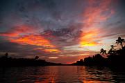 Fototrav Print - Kinabatangan River Borneo Malaysia