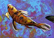 Koi Fish Painting Posters - Kindred Koi Poster by Eve  Wheeler