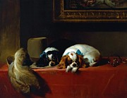 Landseer Paintings - King Charles Spaniels by Pg Reproductions