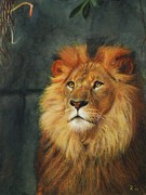 Bush Wildlife Paintings - King of Taronga - Watercolor by GD Rankin