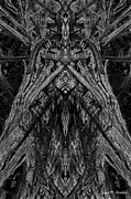 Photomontage Digital Art - King of the Wood by Dave Gordon