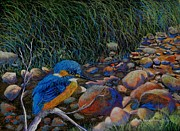 Fauna Mixed Media Originals - Kingfisher Creek by Sandra Sengstock-Miller