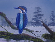 Bird Prints Paintings - Kingfisher by Michael Allen