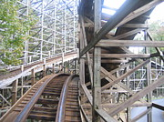 Pretty Prints - Kings Dominion - Grizzly - 01132 Print by DC Photographer
