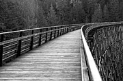 John Daly - Kinsol Trestle Boardwalk