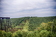 Guy Whiteley - Kinzua Viaduct 6916
