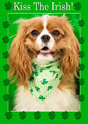 Daphne Sampson - Kiss The Irish Cavalier...