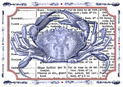 Blue Crab Mixed Media - Kitchen French Cooking   by Adspice Studios