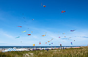 Kites Metal Prints - Kite Festial Metal Print by Robert Bales